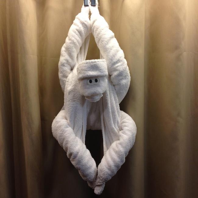 Towel Monkey on Holland America Nieuw Amsterdam