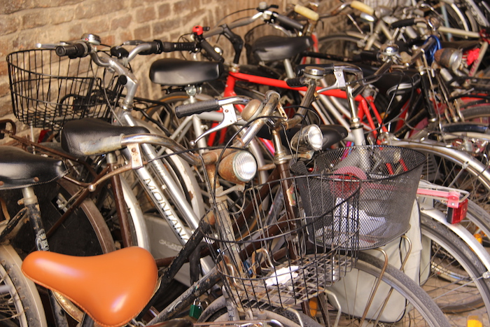 Bicycles in Ferrara