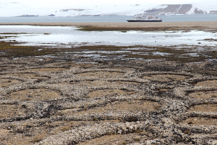 Stone Circles Arctic Desert Svalbard