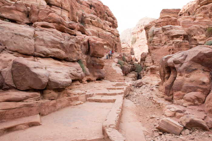 Climbing up by donkey to the Monastery Petra Jordan