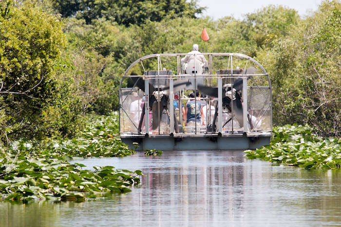 Air Boat Ride in the Everglades. Excursions included in my Escorted Tour of Florida