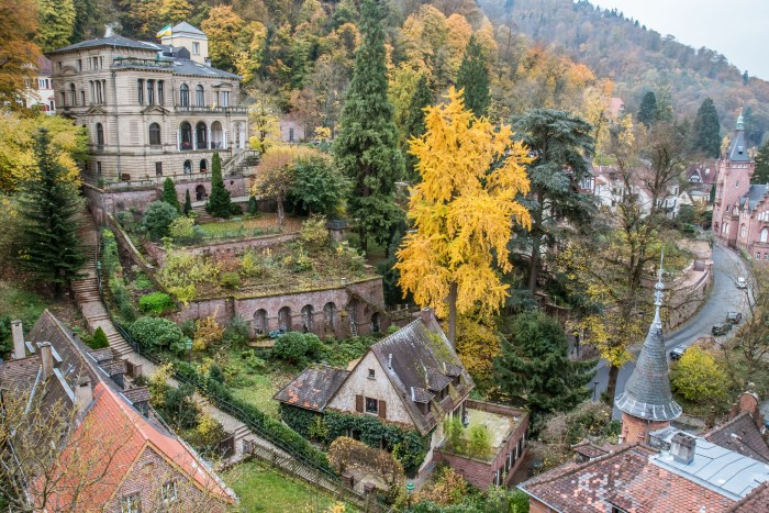 View from Heidelberg Castle - Germany