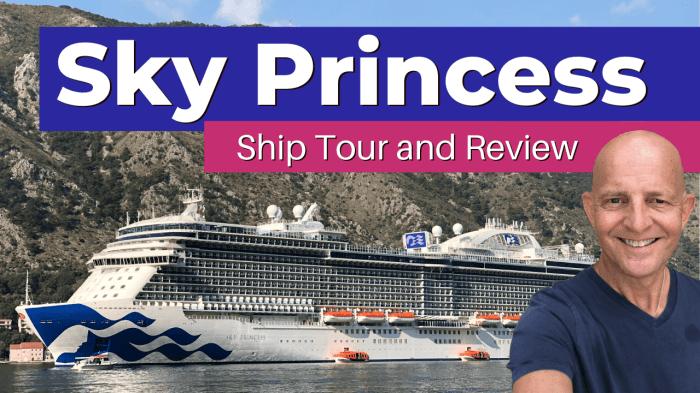 Sky Princess Ship Tour For more visit https://www.tipsfortravellers.com/sky-princess-tips/