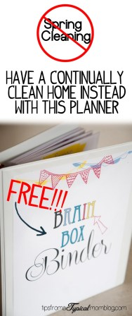 "Just Say NO to Spring Cleaning and have a continually clean home all year round using this ""Brain Box"" binder from Tips From a Typical Mom."