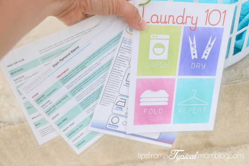 Laundry 101 College Student Gift Idea