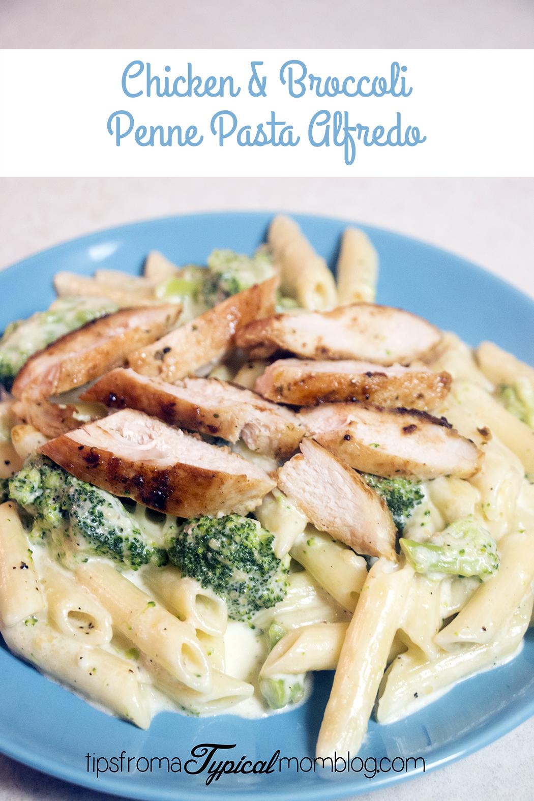 Chicken Amp Broccoli Penne Pasta With Homemade Alfredo Sauce