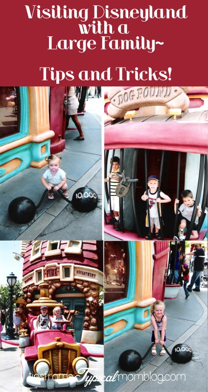 Visiting Disneyland with a Large Family Tips and Tricks