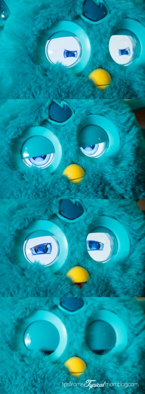 In love with our Furby Connect