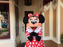Dining Of Character Breakfast With Minnie And