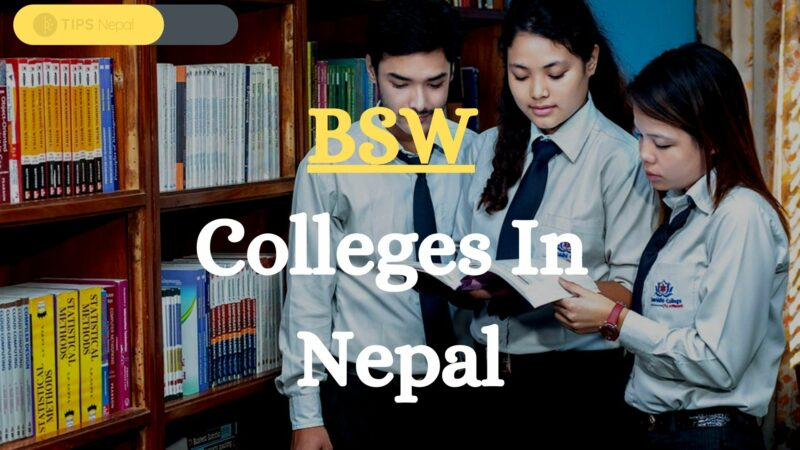 6 Popular BSW Colleges And Some Must-Know Informations