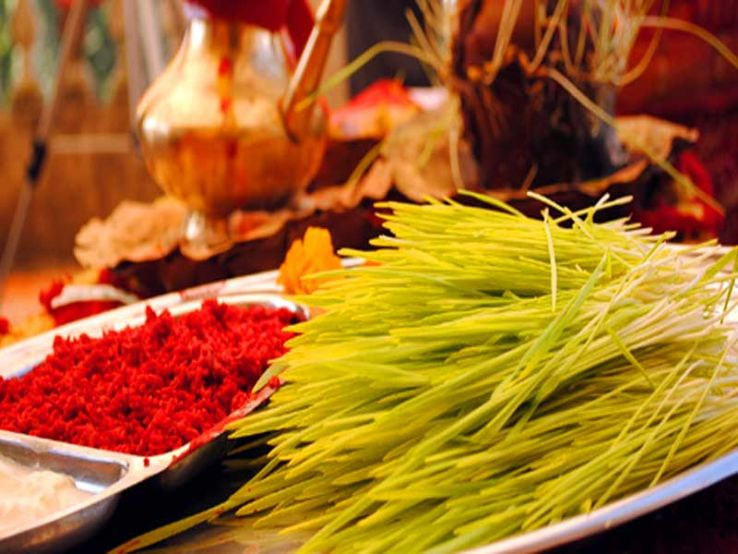 16 Blissful Dashain Wishes And Quotes