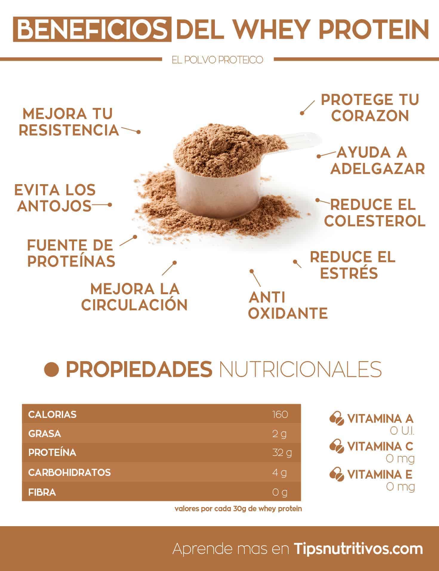 Resultado de imagen de proteína caseina infografia