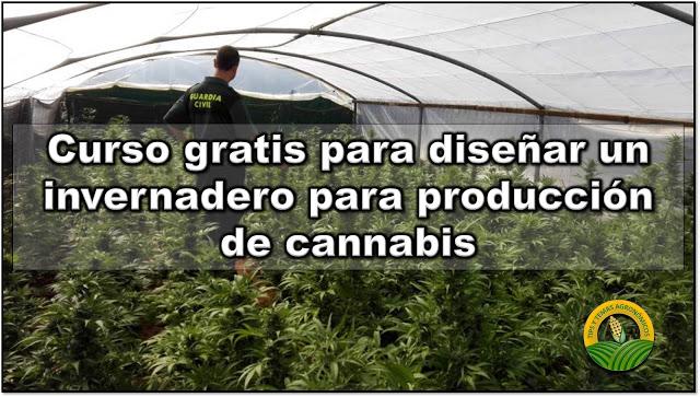 curso gratis produccin de cannabis
