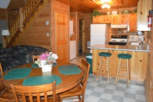 1 bedroom townsend cabin with washer dryer
