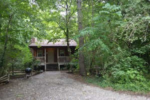 cozy townsend cabin rental near river
