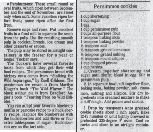 Persimmon Cookies Recipe
