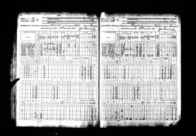 Non-Population Schedule 1880