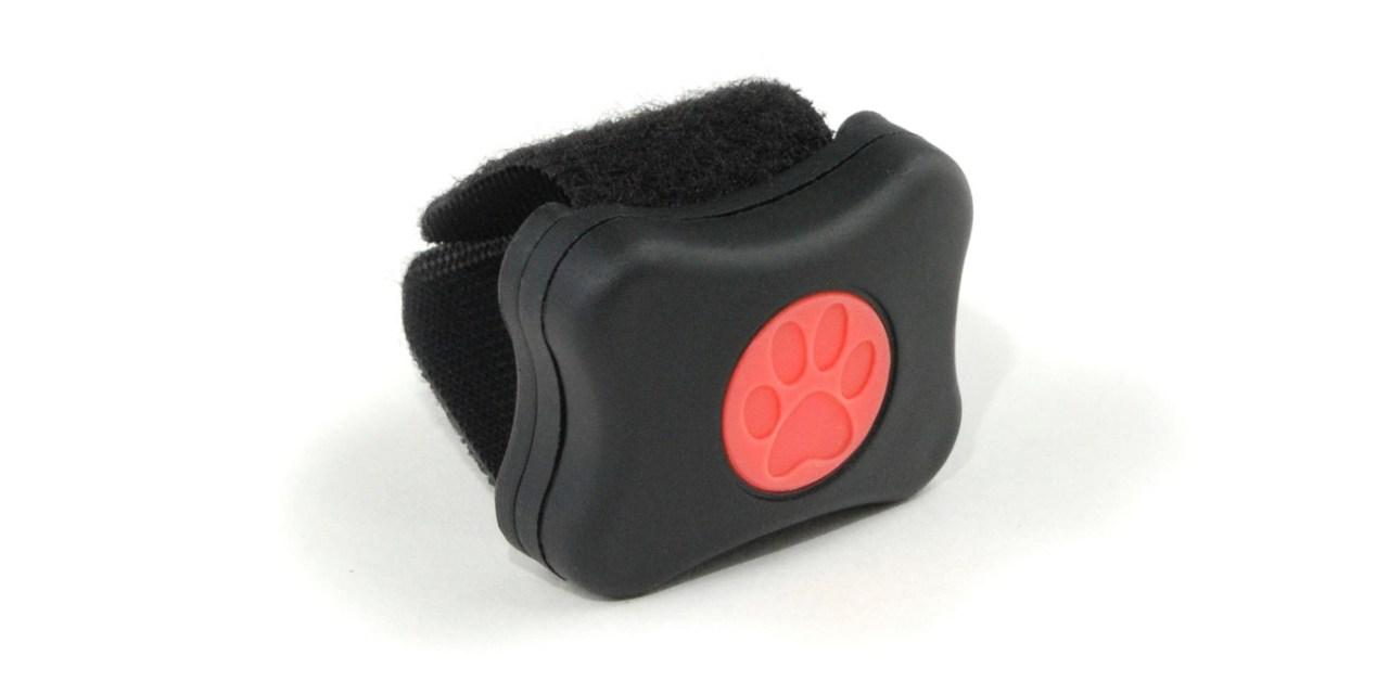 Pitpat Dog Activity Monitor – Reviews & Specs