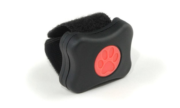 Pitpat Dog Activity Monitor – Reviews & Specs