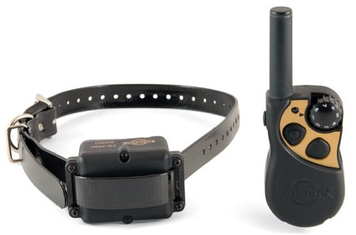 PetSafe Yard and Park Collar | PDT00-12470 Review