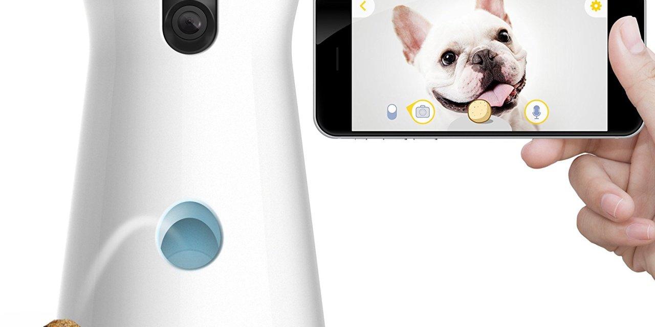 Furbo Dog Camera Reviews | Treat Dispenser for your Pet