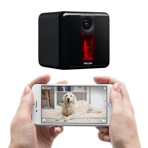 PetCube Review   PetCube Play Remote Wifi Pet Camera