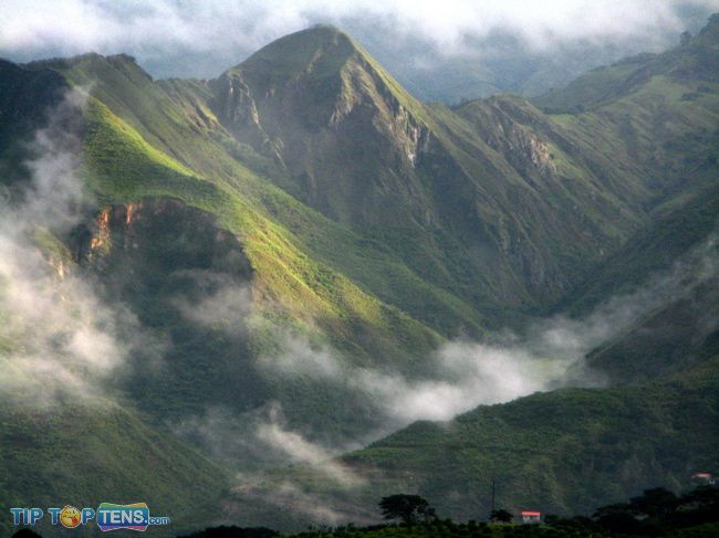 ecuador cloud forest Top 10 Biggest and Popular Rainforests in The World