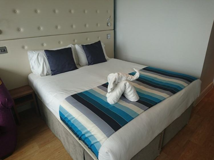shoreline bed