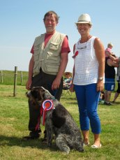 champion pet at Tiree Show 2014