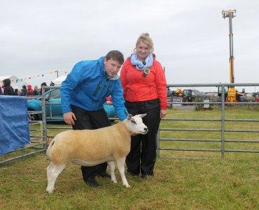 Supreme Sheep Champion