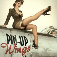 ¿Qué significa Pin-up?