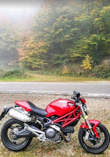 En la foto la 696 vista desde su parte derecha con un fondo de árboles y niebla