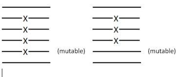 Imagen donde aparecen dos hexagramas