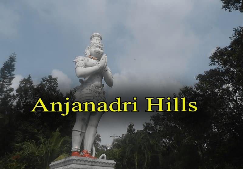 TTD EO Seeks Priests Expertise On Anjaneya Birth Location In Tirumala Hills