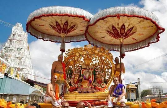 Lord Sri Venkateswara On Kalpa Vriksha Vahanam In Tirumala Brahmotsavams,2014