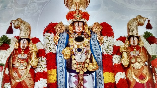 Lord Sri Venkateswara With His Divine Consorts