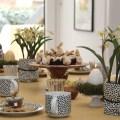 Eierlikoer Tischdeko Ostern _9