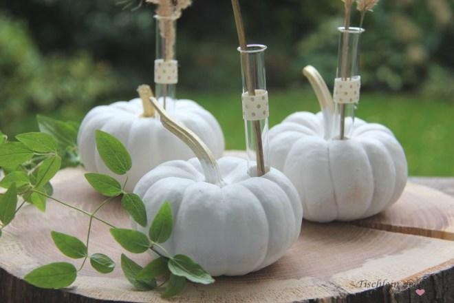 dekorative Kürbisse für den Herbst