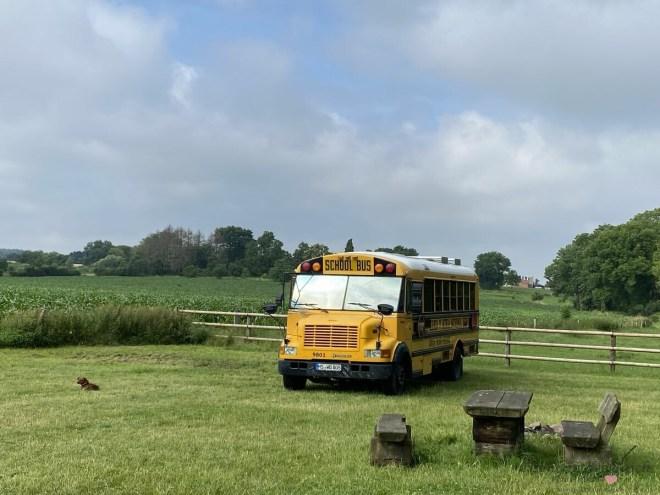 amerikanischer Schulbus auf großer Wiese