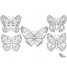 Malvorlage Maske Schmetterling - Kinder zeichnen und ausmalen
