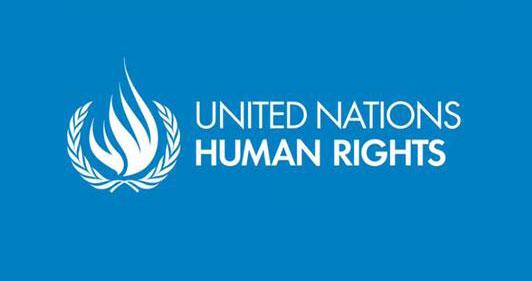 Transparency International Sri Lanka  THE UN INVESTIGATION INTO HUMAN RIGHTS IN SRI LANKA