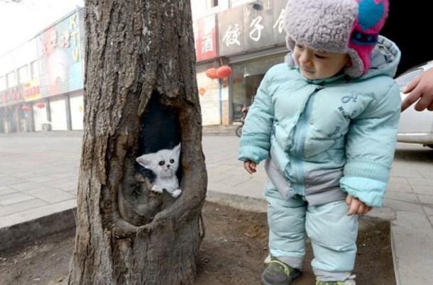 bimbetto albero