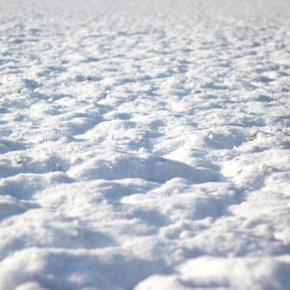 Schneebilder Schnee  kostenlose Bilder download  titania foto