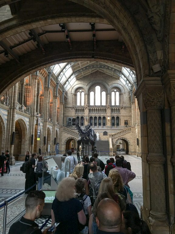 TitaniumGeek untitled 9 of 92 1 Sleeping with Dinosaurs   DinoSnores at the Natural History Museum Titanium Adventures  Titanium Adventures NTFSCD Now Time for Something Completely Different Natural History Museum DinoSnores   Image of untitled 9 of 92 1