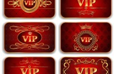 Elegant Golden Border VIP Card Vector 04