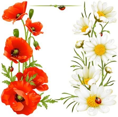 Spring Flowers Vector Illustration 01