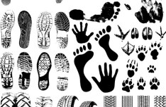 Set Of Black And White Footprints Vector