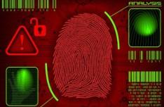Vector Fingerprint Analysis Interface