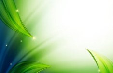 Vector Abstract Background With Green Leaves 04