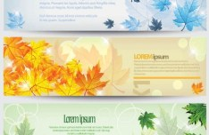 Elegant Vector Banners with Maple Leaf Backgrounds